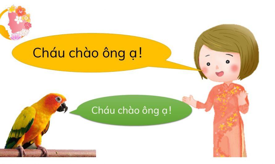 文本語言篇—教材教法